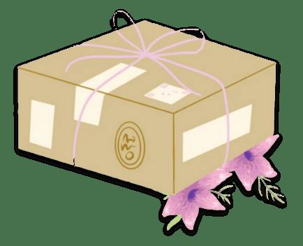livraison box cosmétique