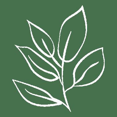 Des produits naturels et bio